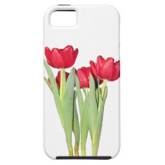 Red Tulips iPhone 5/5S Cases