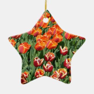 Red tulips ceramic star decoration