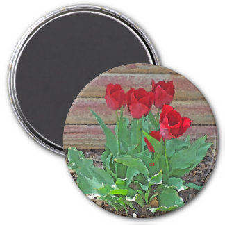 Red Tulips Flowers Petals Bloom in their Prime 7.5 Cm Round Magnet