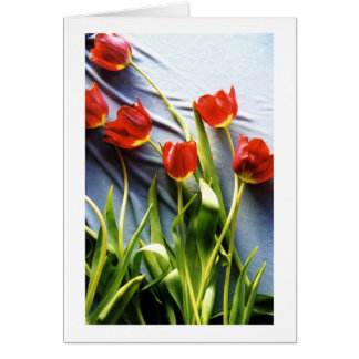 Red Tulips for Kerstin Card