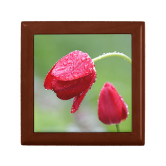 Red Tulips in the rain Small Square Gift Box