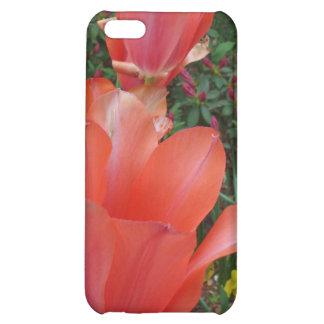 Red Tulips iPhone 5C Cases