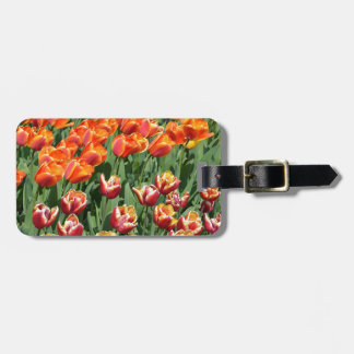 Red tulips luggage tags