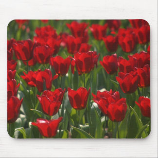 Red Tulips Mousepad