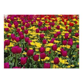 Red Tulips pansies daisies and primulas flowers Custom Invitations