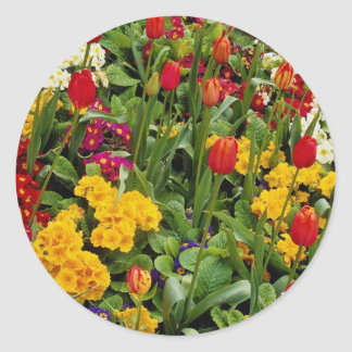 Red Tulips, pansies, daisies and primulas flowers Round Sticker