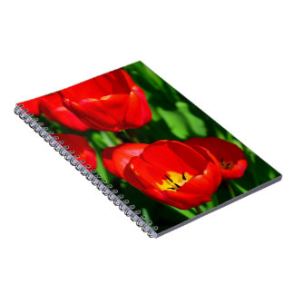 Red Tulips Spiral Note Books
