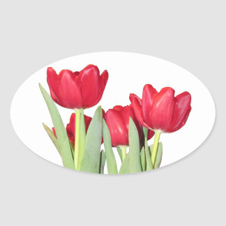 Red Tulips Oval Sticker