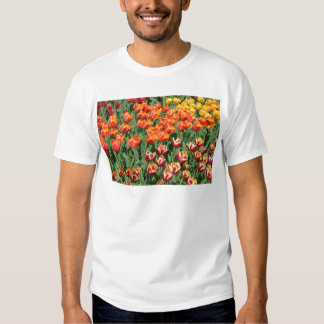 Red tulips t-shirts