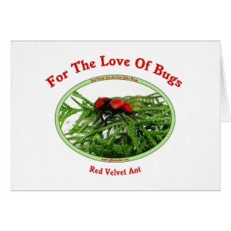 Red Velvet Ant Love Bugs Greeting Cards