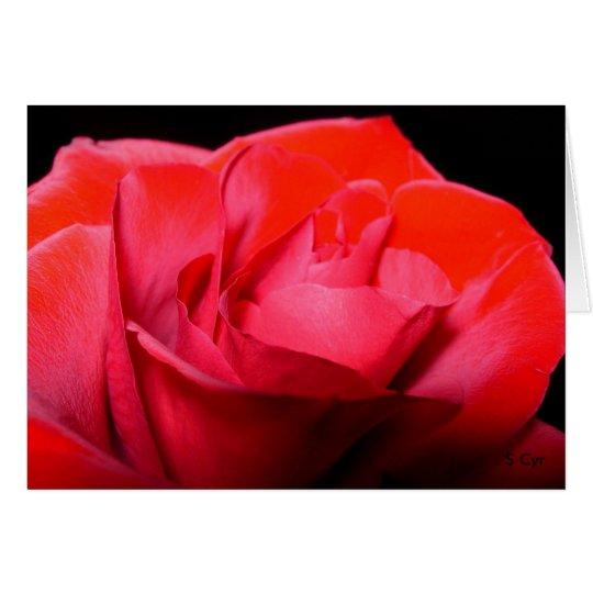 Red Velvet, S Cyr Card