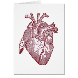 Red Vintage Anatomical Heart Greeting Card