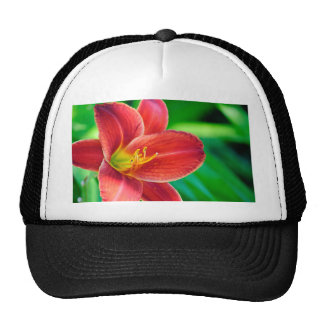 Red Volunteer Hat