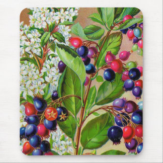 Red White abd Blue Floral Mousepads