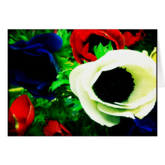 Red, White, and Blue Anemone Blank Greeting Card