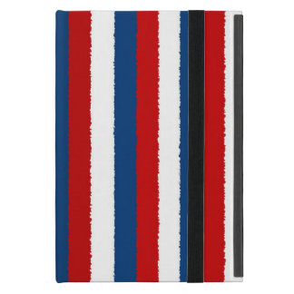 Red, White and Blue Pattern iPad Mini Case
