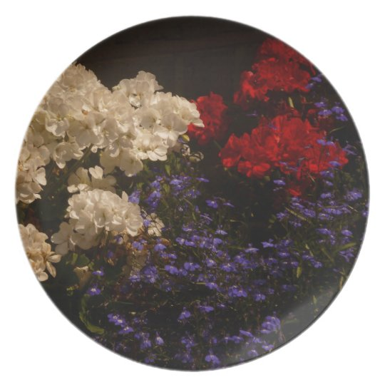Red White and Blue Plate