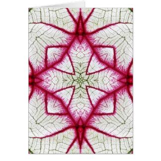 Red, White and Green Caladium Kaleidoscope Greeting Card