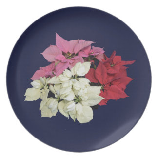 RED WHITE AND PINK POINSETTIAS DINNER PLATES
