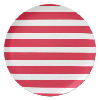 Red White Striped Stripes Summer Picnic Camping Dinner Plate