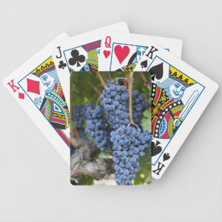 Red wine grapes on the vine bicycle playing cards