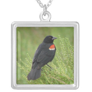 Red-winged Blackbird Necklace