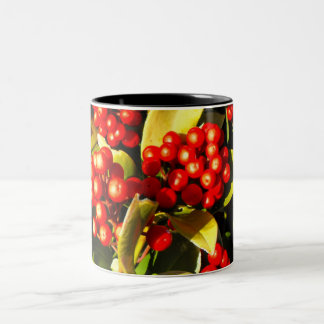 Red winter berries in Jersey Mug