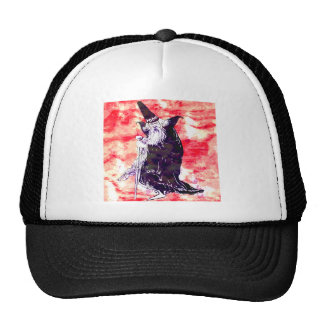 Red Wizard Mesh Hat