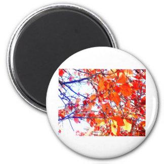 Red Woodland Pastels 6 Cm Round Magnet