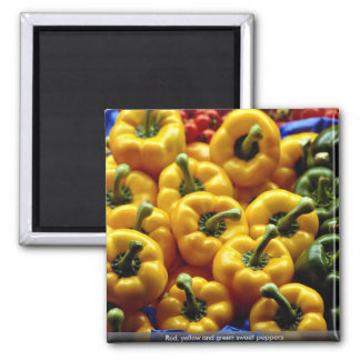 Red, yellow and green sweet peppers fridge magnets