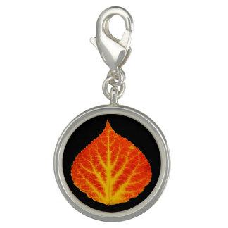 Red & Yellow Aspen Leaf #10