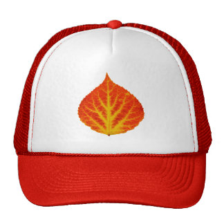 Red & Yellow Aspen Leaf #10 Cap