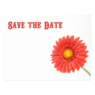 Red & Yellow Daisy Save the Date Postcard