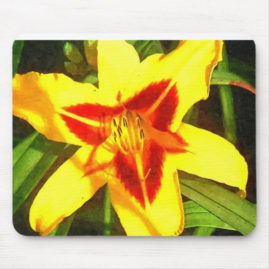 Red & Yellow Daylily Flower Mousepad