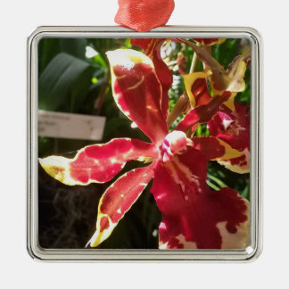 Red Yellow Orchid Premium Square Ornament