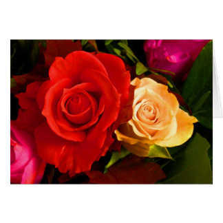 Red Yellow Rose Cards