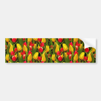 Red Yellow Tulip Flowers Photo Pattern Bumper Sticker