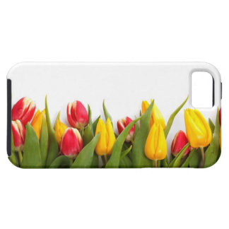 Red & Yellow  Tulips iPhone 5 Case
