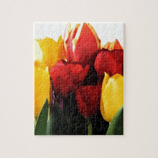 Red Yellow Tulips Jigsaw Puzzle