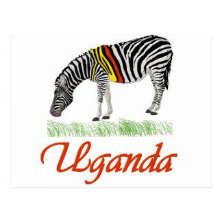 Red Zebra Series Postcard
