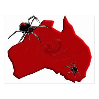 Redback Spider Australia Postcard