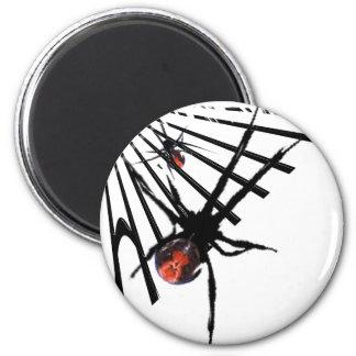 Redback Spider Fridge Magnet