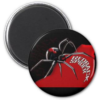 Redback Spider Refrigerator Magnets