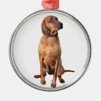 Redbone Coon Hound (A) Christmas Ornament