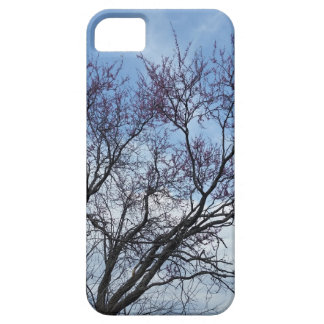 Redbud and blue sky case for the iPhone 5