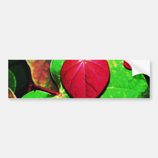 Redbud Heart Leaf Bumper Sticker