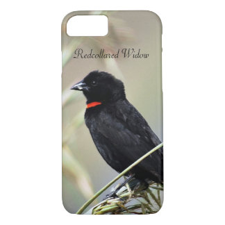 Redcollared Widow iPhone 7 Case