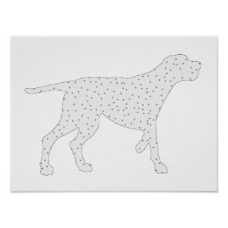 Redcone coonhound poster
