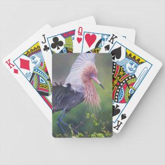 Reddish Egret (Egretta Rufescens) Adult Bicycle Playing Cards