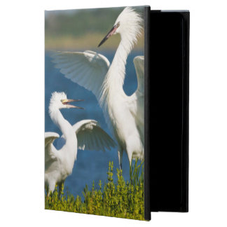 Reddish Egret (Egretta Rufescens) Adult Feeding Cover For iPad Air